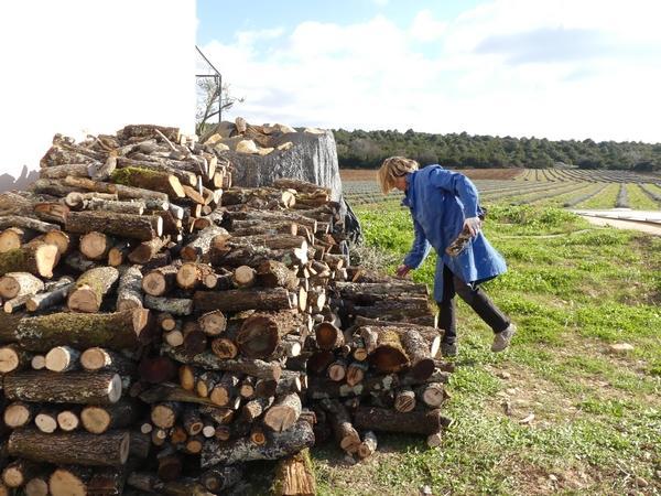 Tout le bois vient de notre forêt / wood comes from our forest