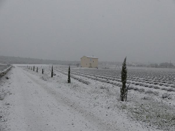 Une rare journée de neige / unusual snow