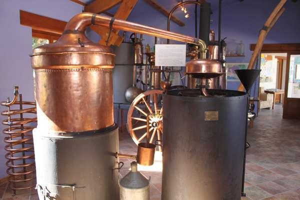 Musée de la lavande très pédagogique explication du processus d'extraction / Lavender museum with educational explanations of the distillation process